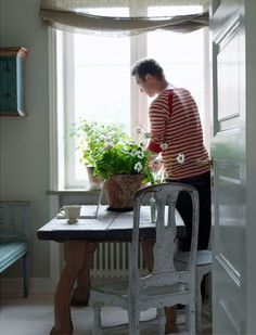 Eat in kitchen, flower and chair and table and...