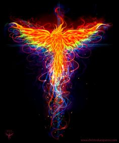 Rainbox Phoenix by amorphisss on DeviantArt Phoenix Artwork, Phoenix Wallpaper, Phoenix Images, Phoenix Painting, Phoenix Design, Phoenix Tattoo Design, Mythical Creatures Art, Fantasy Creatures, Phoenix Bird Tattoos