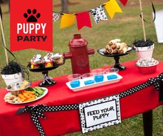 Simple & inexpensive puppy birthday party or playdate ideas #puppy #birthday #party