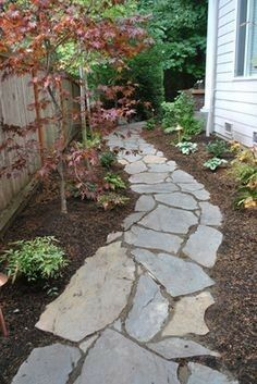 Front Yard and Garden Walkway Landscaping Inspirations 7 - Rockindeco Garden Shrubs, Garden Paths, Side Yard Landscaping, Landscaping Ideas, Walkway Ideas, Landscaping Software, Path Ideas, Landscaping Melbourne, Luxury Landscaping