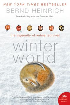 """Celebrate the winter holidays with these selections for all ages from the Bookshare collection team! Image: Book cover: """"Winter World: The Ingenuity of Animal Survival"""" by Bernd Heinrich. Find more accessible books for the holidays at:  http://bookshareblog.wpengine.com/2016/12/make-the-holidays-special-with-bookshare/"""
