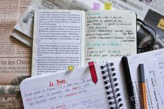 French studies  by remizova, via Flickr