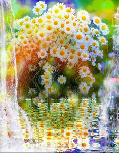 Latest animation I made - music by Peder B Helland I purchased on iTunes gif Daises, rainbow waterfalls animation Beautiful Flowers Images, Beautiful Gif, Flower Images, Beautiful Roses, Good Morning Gif, Good Morning Flowers, Gif Pictures, Nature Pictures, Dank Gifs
