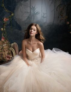 beautiful tulle ball gown