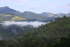 Vythiri, Zuid India