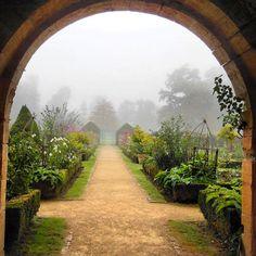 Bom Dia!!!! #arquitetura #garden