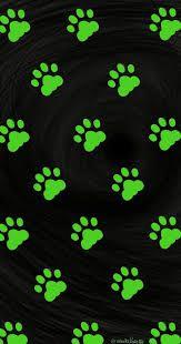Resultado de imagem para miraculous cat noir tumblr desenho