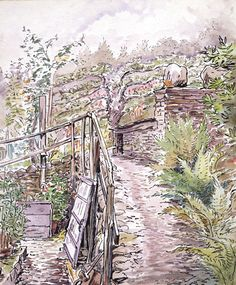 beatrix potter drawings | Beatrix Potter Art, Prints, Paintings, Posters