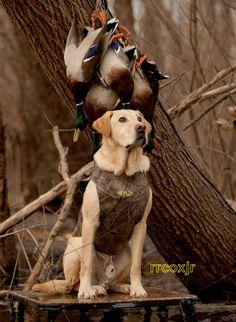 AVERY GREENHEAD GEAR GHG STANDARD DOG PARKA VEST BB BUCKBRUSH CAMO XL 00932 NEW! | eBay