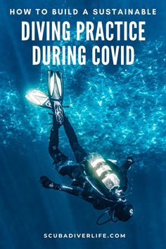 Staying an environmentally conscious diver is not about being perfect. It's about striving to make better choices and helping others do the same. If we all work together to adopt sustainability as the new norm, we can emerge in this new post-Covid world stronger. Let's spread sustainability, not the coronavirus. #covid19 #divingprecautions #divingpractices #scubadivingtips #scubadiving #scubadivingprecautions #scubadivingpractices Technical Diving, Full Sun Perennials, Best Scuba Diving, Scuba Gear, Make Good Choices, Underwater, Sustainability, Environment, Ocean
