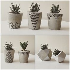 CONCRETE POTS BY BOTANICA HOME