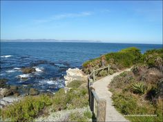 The Hermanus cliff path hugs the coastline and offers a 12km path for walkers and hikers alike. Start near the new harbour and enjoy a visual journey along the beautiful rugged coastline to Grotto beach, this path offers many benches to sit and watch the whales or to enjoy ocean views. South Africa Beach, Coast Hotels, Adventure Activities, Seaside Towns, Green Mountain, Whale Watching, Heritage Site, Paths, Tourism