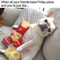 Friday Plans Potato #Friday, #Plans, #Potato