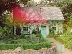 an old irish widow lives here by elisa