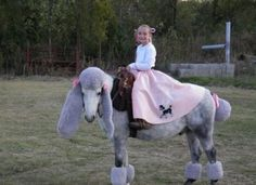 Best poodle and poodle skirt costume EVER! We used to Halloween parties at the Stable we owned they were great fun!