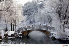 Bildresultat för piekne zdjecia zimy