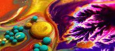 Kingdom of Colours by Thomas Blanchard