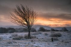 https://flic.kr/p/PnTpMF | Winter Starts | Winter Starts I took an early trip out this morning to the area around Leadhills and Wanlockhead with the forecast promising the first proper snowfall of the winter. This is from a wee hill just after sunrise while I was waiting for the snow and mist to clear, waiting for the light. Sony A7RII Sony FE24-70mm f2.8 GM All rights reserved © Brian Kerr Photography 2016