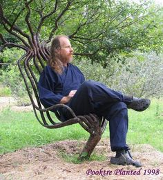 This artist trained the tree into a living chair and it took 8 years to grow. THIS IS SO COOL!