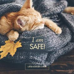 "Inspirational Quotes about relationships | ""I am safe."" — Louise Hay"