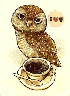 Owl. Coffee. Love. Of course. This has my mom written all over it!  You know it !!!
