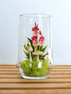 Tiny Red Dancing Lady Orchid Terrarium in Repurposed Vase Orchid Terrarium, Hanging Terrarium, Terrarium Plants, Terrarium Ideas, Dish Garden, Clay Flowers, Garden Inspiration, Orchids, Garden Design