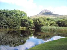 Connemara National Park. Located in the West of Ireland in County Galway.  Great for serious hiking with 70km circuit covering various terrains. Are there shorter/easier walks I wonder... I'm not planning to bring full hiking gear but would love to do some outdoorsy nature walking things.
