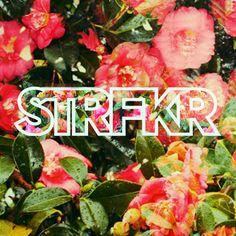 STRFKR Miracle Mile [2013]