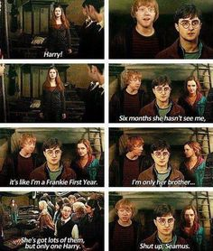 """1 May 1998: """"She's got lots of them, but only one Harry."""" – Seamus Finnigan"""
