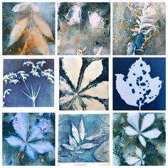 Cyanotype Process, Sun Prints, Art Therapy Projects, Acrylic Flowers, Linocut Prints, Art Sketchbook, Botanical Prints, Art Techniques, Art Lessons