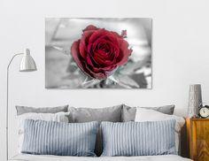 Discover «frozen rose», Exclusive Edition Aluminum Print by Helga van de Kar - From 69€ - Curioos