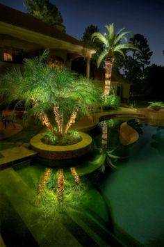 Outdoor, Fantastic Outdoor Lighting Around Pool With Splending Palm Trees For Eclectic Home Ideas: Charming Outdoor Lighting around Pool with LED Technology