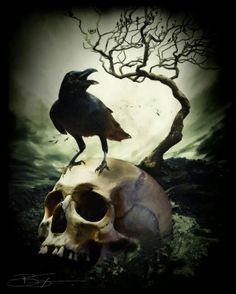 The raven and skull