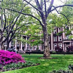 Gorgeous scene at Columbia University
