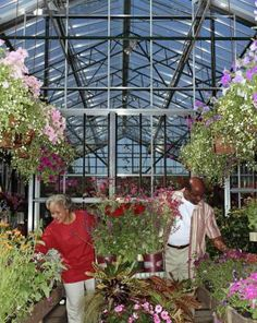 Advice for Starting a Small Plant Nursery Business