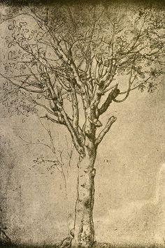 Michelangelo, Tatoo Art, Tattoo, Pierre Auguste Renoir, Renaissance Art, Tree Art, Find Art, Painting & Drawing, Amazing Art