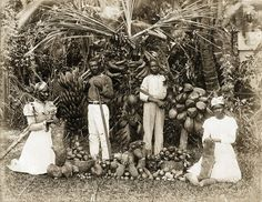 The Caribbean Photo Archive is a privately collection, owned by archivist Patrick Montgomery, of original photographs taken throughout  the Caribbean Islands,  the Bahamas and Bermuda in the 19th...