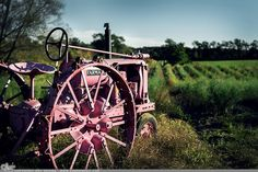"""Picture-A-Day (PAD n.1550) """"Pink Tractor"""" ~Amy, DangRabbit Photography Pink Tractor, I Believe In Pink, Vintage Tractors, Pink Power, International Harvester, Color Stories, Black And White Pictures, My Favorite Color, Pretty In Pink"""