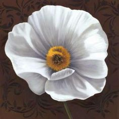 Cuadro White Poppies I