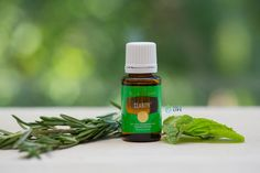 Invite clarity into your day with this special Young Living blend that combines Basil, Rosemary, Peppermint and more. Just sign up or use…