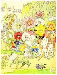 Illustrations | May Gibbs' Nutcote