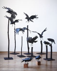 paper animals sculptures by Anna-Wili Highfield. These sculptures could easily be made out of metal. Bird Sculpture, Animal Sculptures, Paper Sculptures, Book Art, Raven Art, Crows Ravens, Paper Animals, Paperclay, Australian Artists