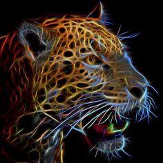 Spotted leopard from the Turtleback zoo in West Orange NJ #Topaz #Zoo #Leopard