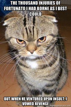 The Cats of Amontillado