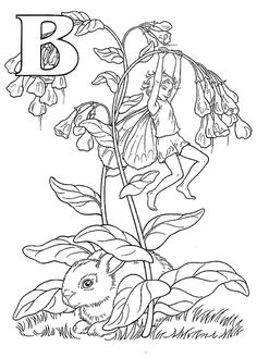 Bluebell Flower Fairy Coloring Pages Colouring Adult Detailed Advanced Printable Kleuren Voor Volwassenen