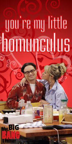 Big Bang Theory Valentine