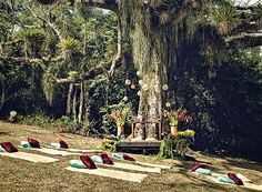O altar foi montado sob uma paineira centenária, numa antiga fazenda de café (hoje reserva ecológica), em Bragança paulista. Para acomodar os convidados, esteiras e almofadas na grama (Foto: Daniel Tancredi/Editora Globo)