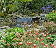 Minter Gardens waterfall Garden Waterfall, Garden Bridge, Outdoor Structures, Country, Plants, Gardens, Rural Area, Country Music, Planters