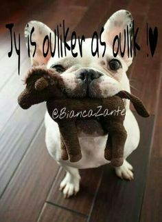 Oulik Afrikaanse Quotes, Goeie More, Special Quotes, Cute Quotes, My Man, Just Love, French Bulldog, Qoutes, Friendship
