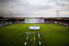 Stadion PEC Zwolle Soccer, Sports, Hs Sports, Futbol, European Football, European Soccer, Football, Sport, Soccer Ball